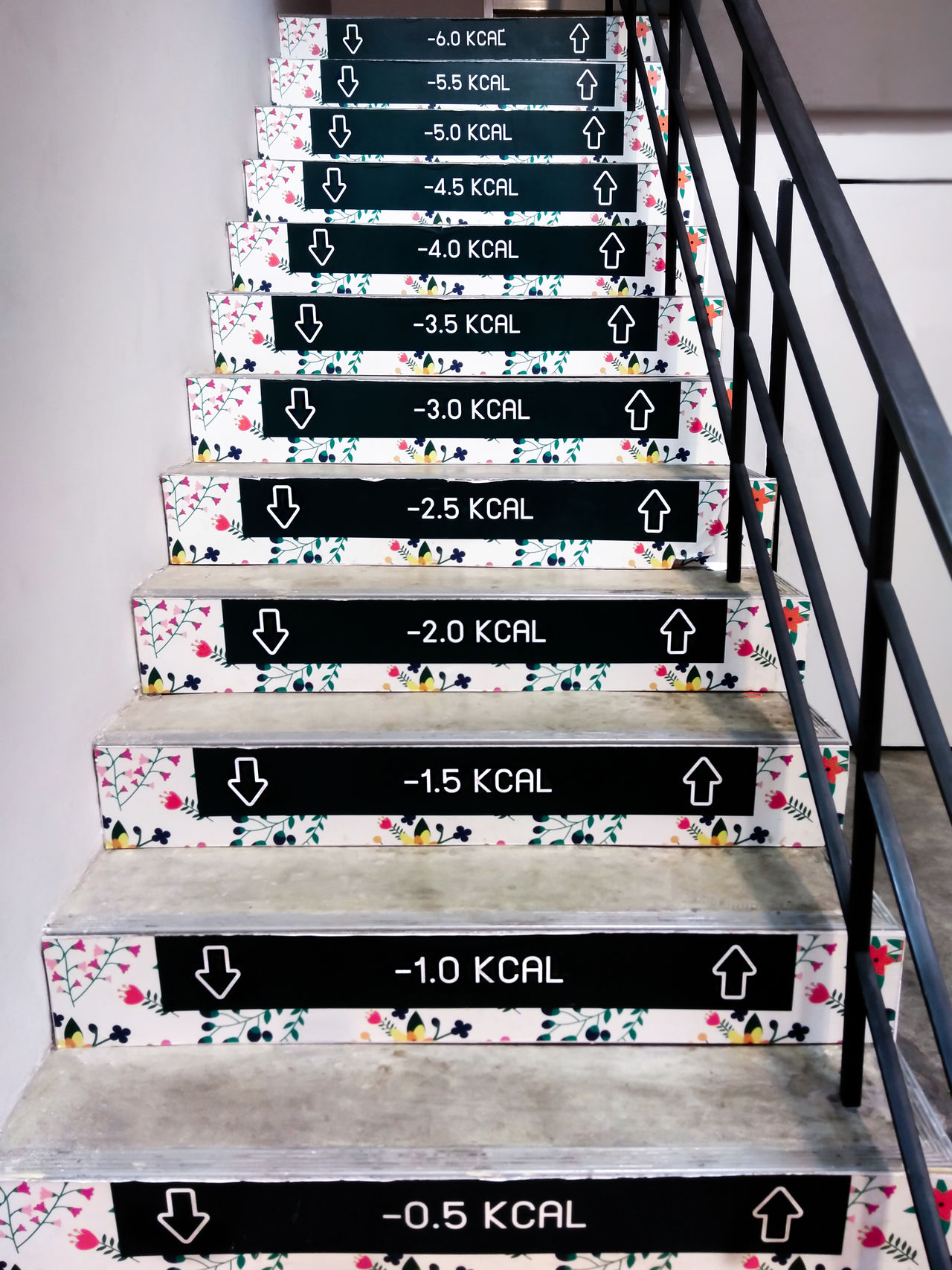 Funny Weight Loss Decal on a Staircase Abundance Arrangement Cat Choice Close-up Day Diet & Fitness Exercise Fit G Guardraild Healthy In A Row Indoors  Kcal No People Saturday Shelf Stack Staircase Up We Weight Gain