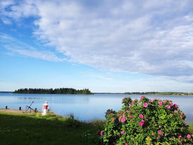 Swedish Summer Ostnäs Summer Cottage ☀️🌿🐟
