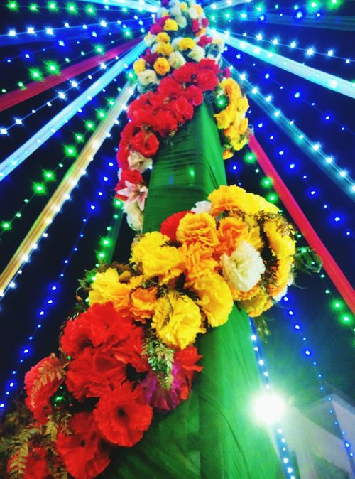 The Places I've Been Today Gitish Lightening Flowers EyeEm Best Shots Eye4photography  The Week On EyeEm Neon Life