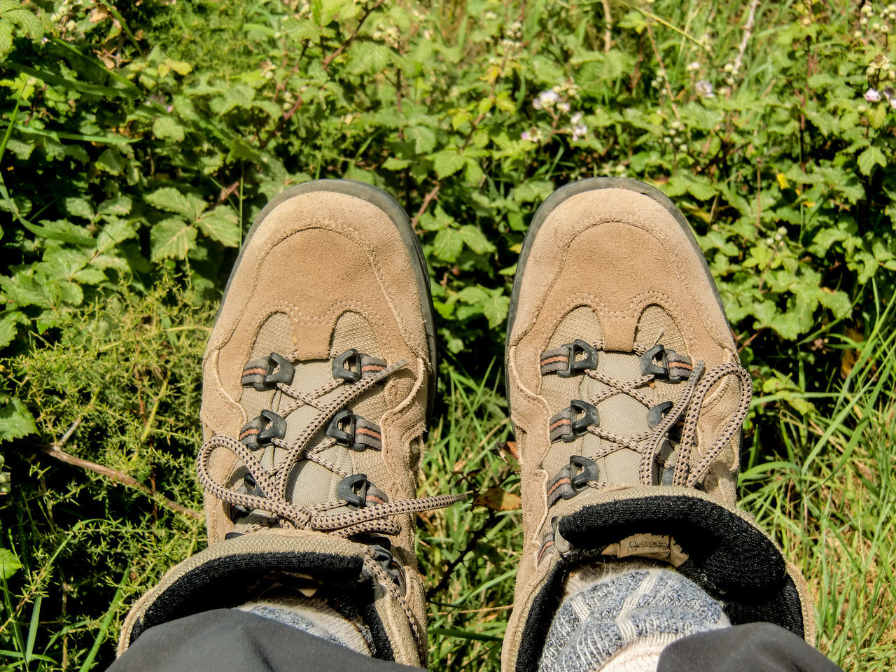 shoe, one person, low section, real people, human leg, human body part, personal perspective, human foot, canvas shoe, standing, pair, shoelace, day, lifestyles, men, outdoors, grass, close-up, one man only, nature, adult, people