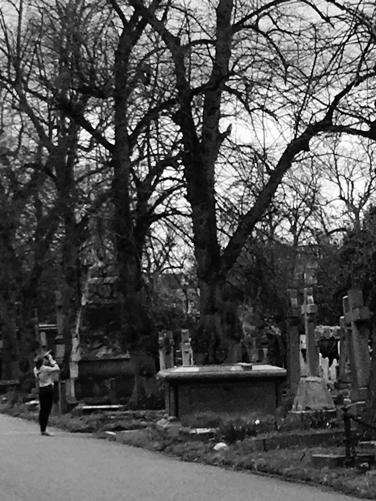 Taking Photos Enjoying Life Iphonephotography London Cemetery Photographer In The Shot