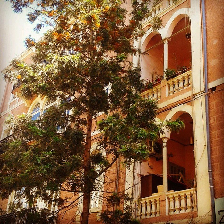 TBT  to last sunday car free day Marmikhael Achrafieh Achrafieh2020 discover armeniastreet lebanon beirut heritage colors architecture throwbackthirsday arches nature urban romantic nostalgia