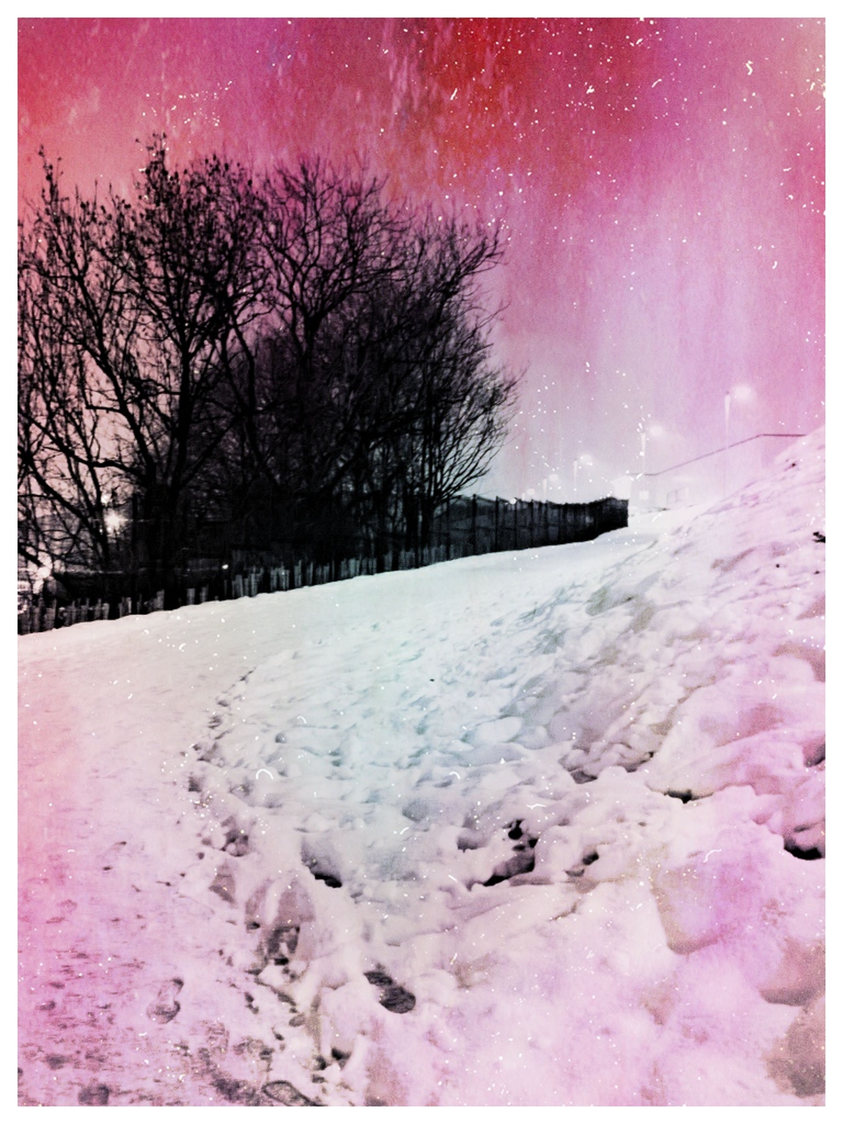 transfer print, auto post production filter, snow, tree, cold temperature, winter, sky, tranquility, tranquil scene, bare tree, scenics, beauty in nature, nature, season, weather, landscape, sand, beach, outdoors, clear sky