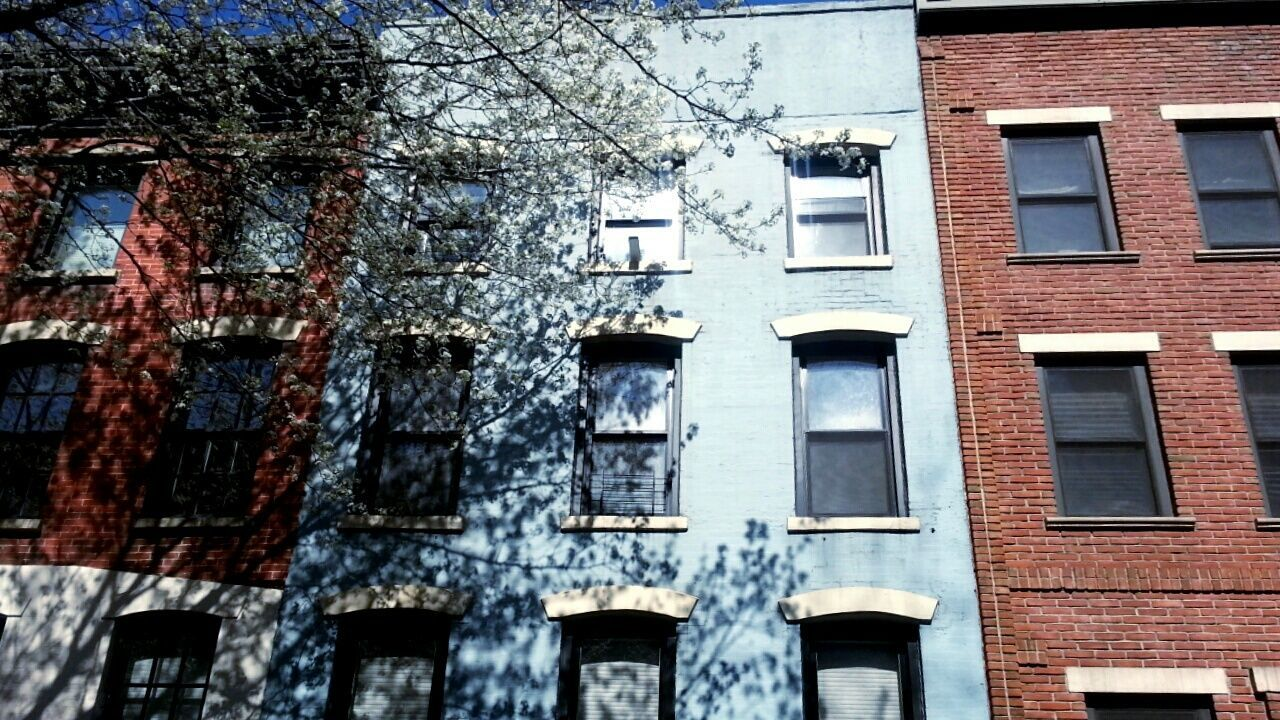 architecture, building exterior, built structure, window, no people, outdoors, day, low angle view, city, tree