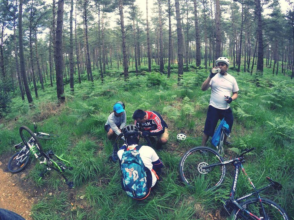 fix up. 🚴💙 Feel The Journey Swinley United Kingdom Bike Biker Boy Bike Ride Bike Photography