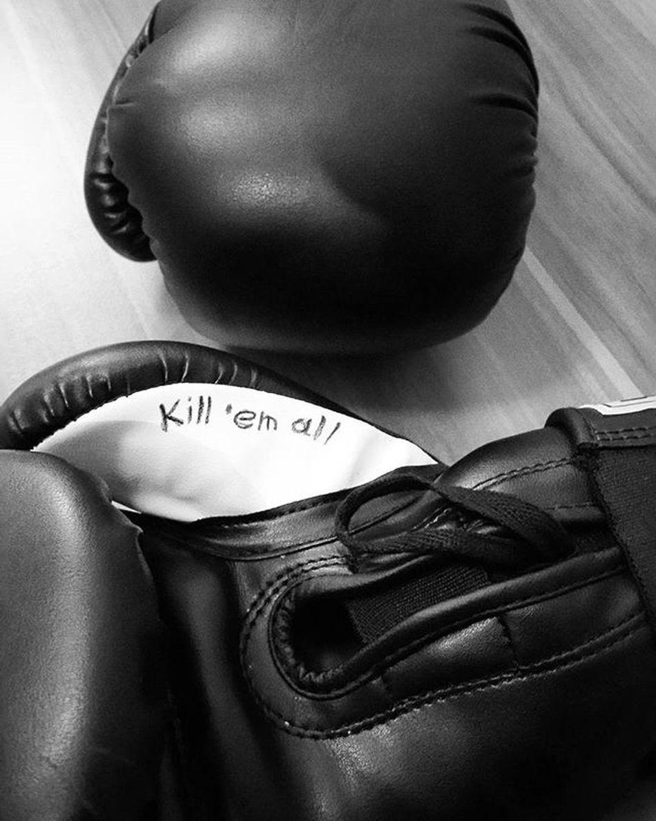 Gloves Boks Kickboks Kickboxing Training Mantra