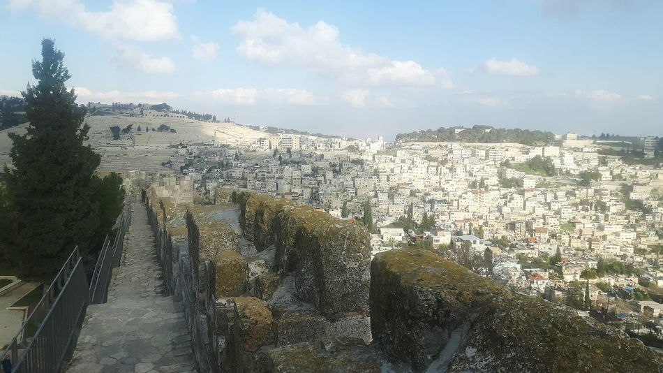 Mount Of Olives Israel Tempelberg Temple Mount Dome Of The Rock Dicover Your City Tree Green Tree Sightseeing Above Jerusalem Stadtmauer Jerusalem Stadtmauer Tourism Ramparts Walk Rampart Jaffa Gate Jerusalem Israel Ramparts Jerusalem City Wall Rampartswalk Jerusalem Ancient Rocks Ancient Civilization East Jerusalem