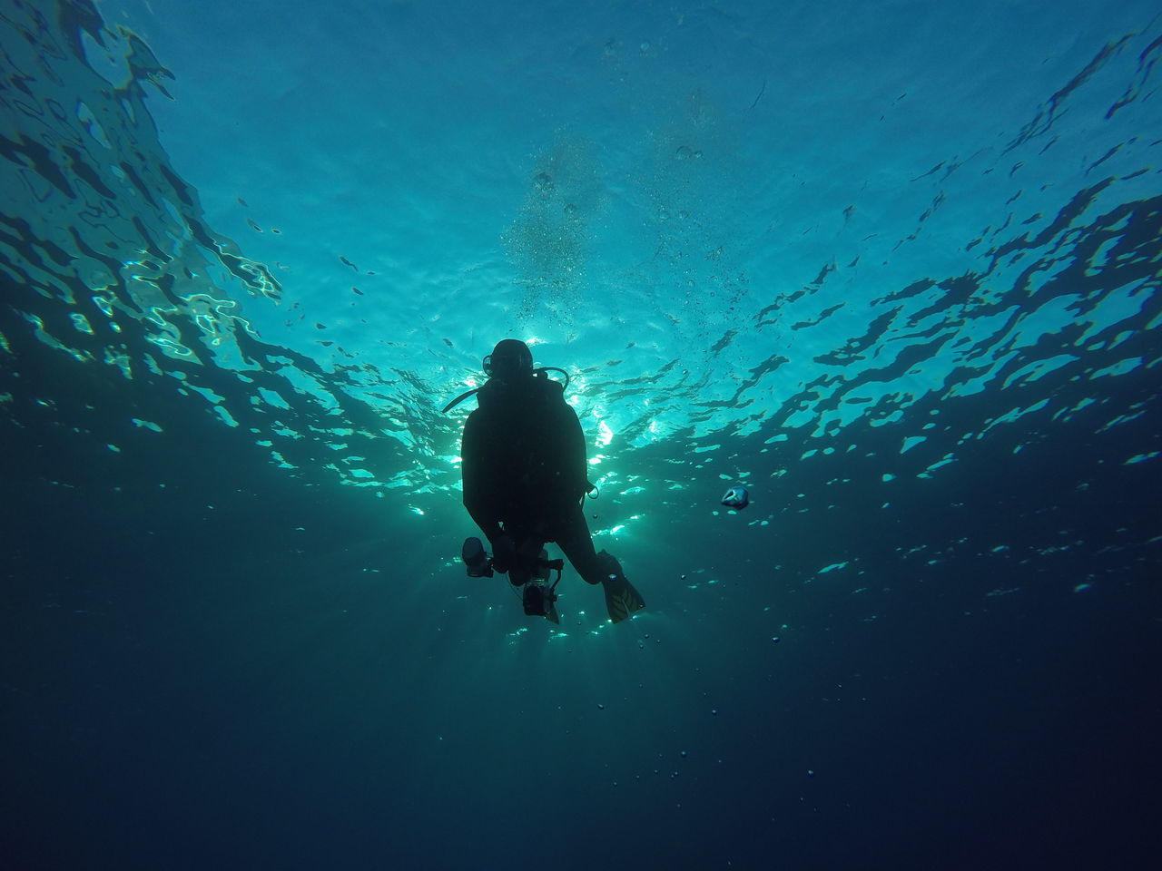 only men, underwater, scuba diving, adventure, exploration, leisure activity, sea, undersea, diving suit, one person, nature, adults only, diving equipment, people, swimming, one man only, men, adult, beauty in nature, scuba diver, outdoors, day