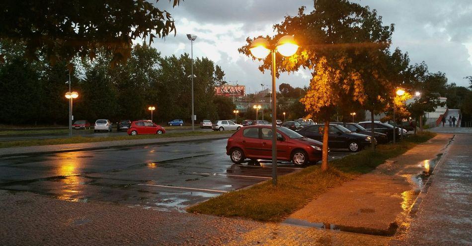 Rain FEUP Porto Weather Henry Storm Evening Barren Calmafterthestorm Bridge