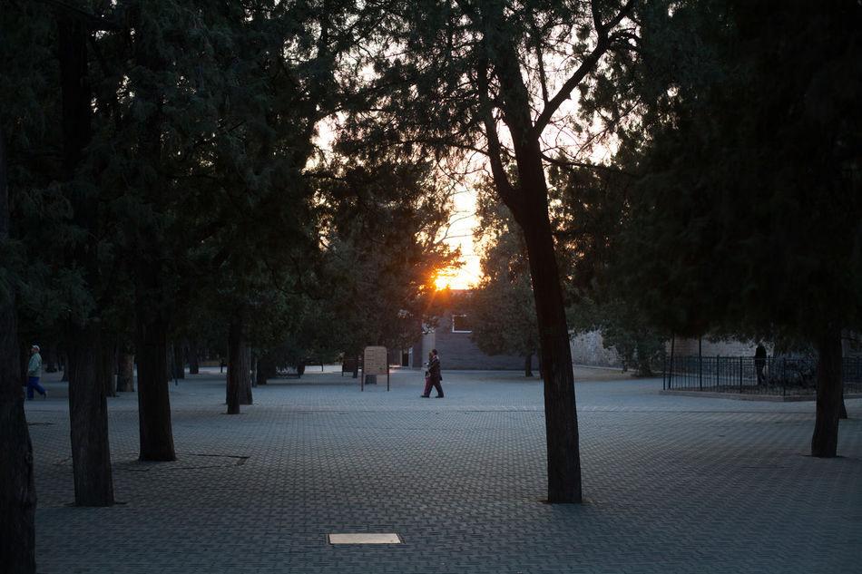 Beautiful stock photos of park, Cobblestone, Day, Four People, Garden