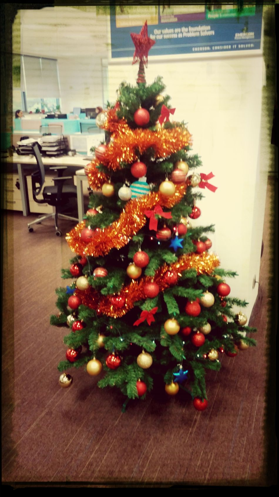 christmas tree @ work - Cluj-napoca First Eyeem Photo
