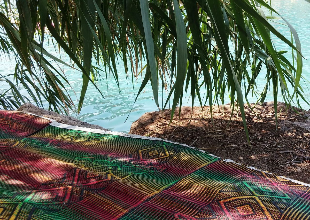 Sun Fun Summer גן השלושה الساخنة Water Springs Israel بيسان