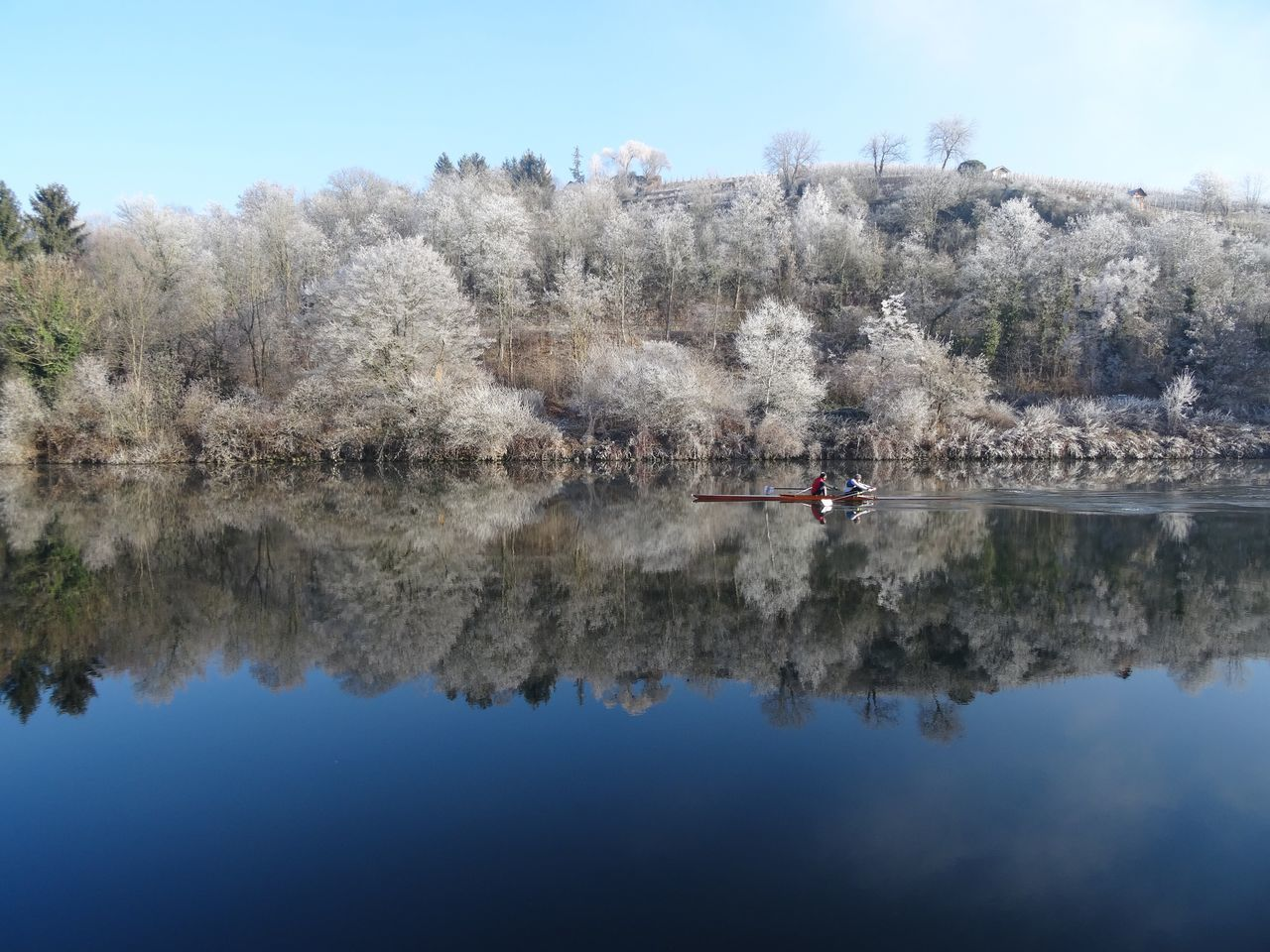 Tree Water Nature Reflection Outdoors Growth Scenics Lake Beauty In Nature Leisure Activity Branch No People Winter Wonderland Cold Temperature Kayaking In Nature Standing Water Neckar River Symmetry White Frost Snow Germany Sport Rowing Winter Sport Team