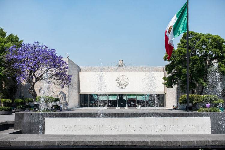 Museo Nacional de Antropología e Historia Mexico City Architecture Architecture Building Exterior Built Structure Cdmx Centro Chapultepec Clear Sky Day Df History Museum  Mexican Mexico Mexico City Museo Nacional De Antropología E Historia Museum No People Outdoors Paseo De La Reforma Steps Sunlight Tree