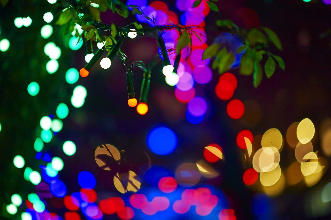 Beautiful stock photos of christmas tree, Arts Culture And Entertainment, Celebration, Celebration Event, Christianity