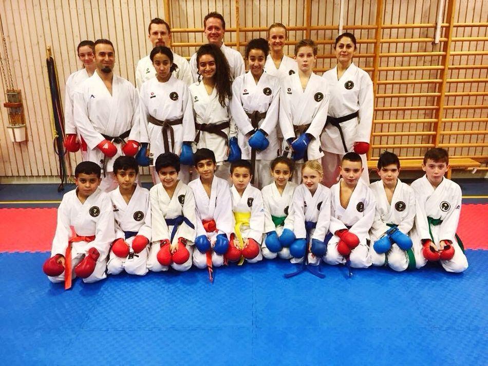 Gothenburg Sweden Frölunda Karate Karate Training