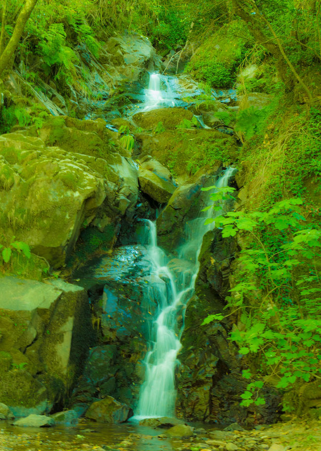 Amazing Beauty In Nature Day Green Green Color Holiday Nature Nature No People Outdoors Park Passadiços Do Paiva Portugal Rock - Object Scenics Walkway Water Waterfall