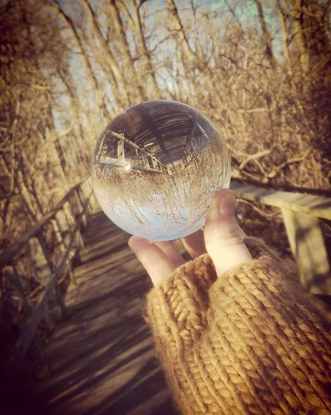 One more picture from today's little adventure ~😺~ Crystalball Beach Blackswampbirdobservatory Photography Mageemarsh LakeErie