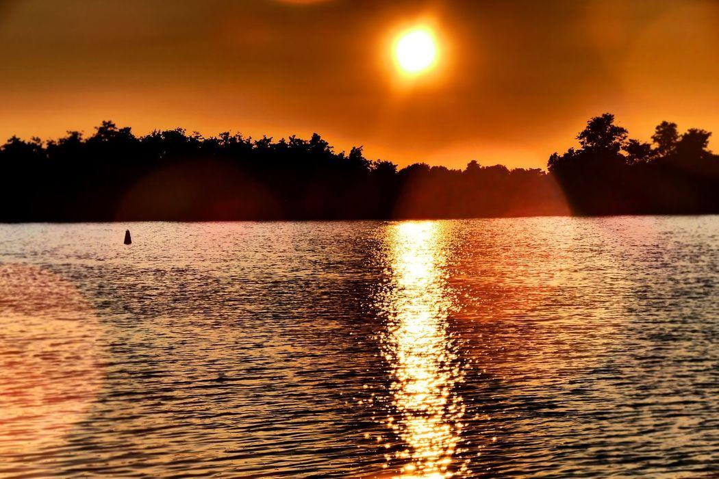 Sundown on water Idyllic Nature No People Orange Color Outdoors Réflexion Sun Sun Down Evening Sundown Landscape Sundown On Water Tree Water Waterfront Waterreflexions Colour Of Life