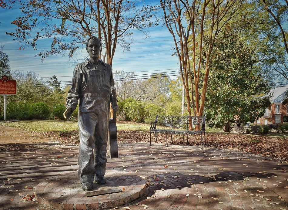 Blue Sky Cast A Shadow Elvis Presley Elvis Presley Birthplace Fall Leaves Shadow Statue T