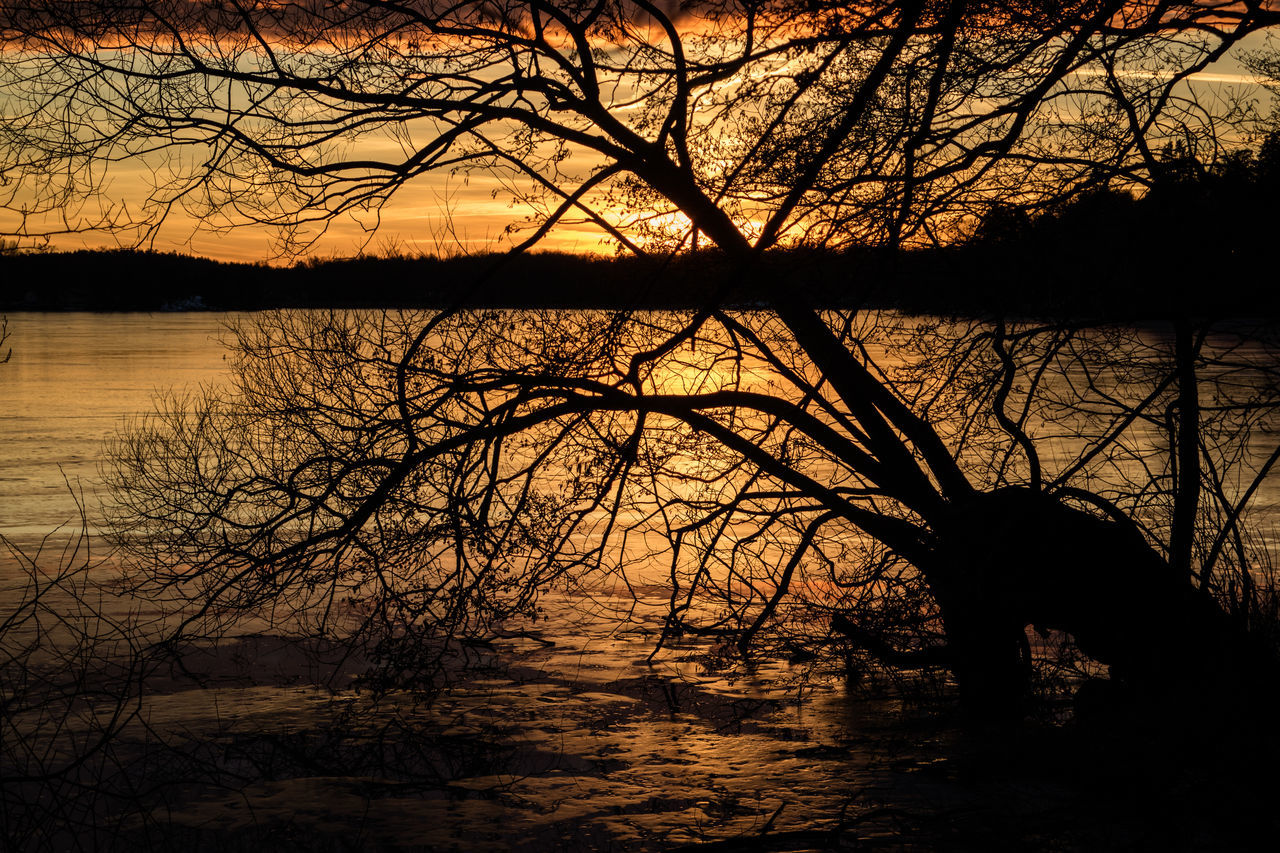 Bare Tree Beauty In Nature Day Dusk Lake Nature No People Outdoors Reflection Scenics Silhouette Sky Sunset Tranquil Scene Tranquility Tree Water Betterlandscapes