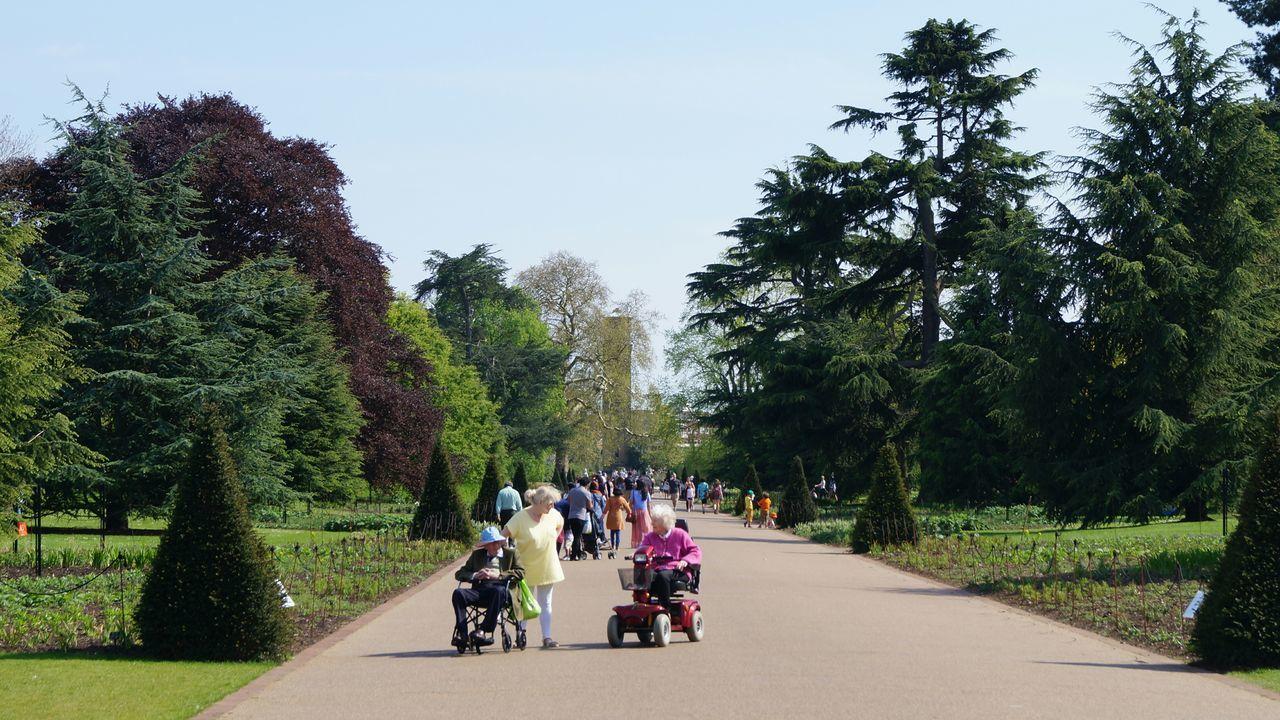London Royal Botanic Gardens Kew Gardens Springtime