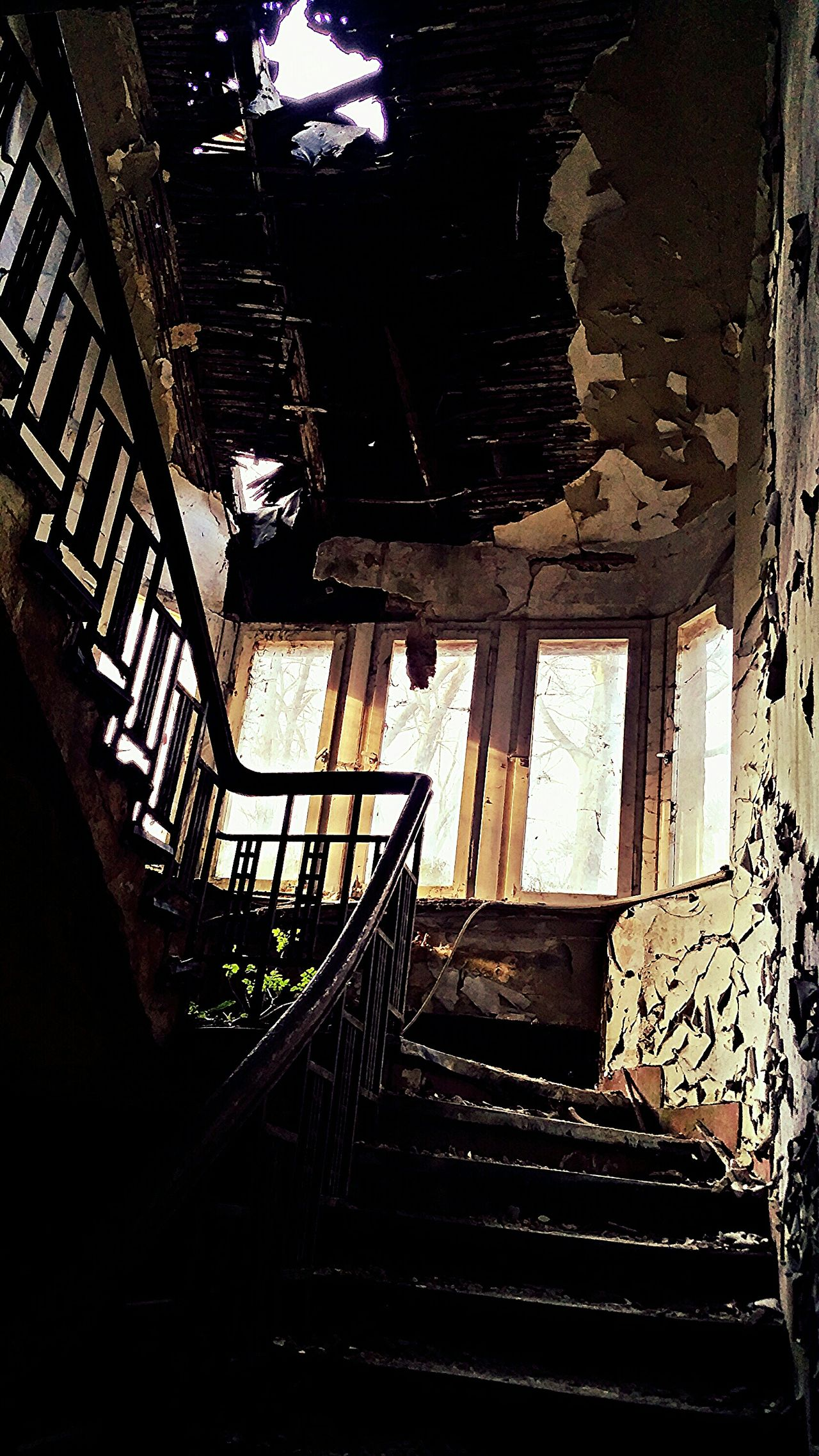 it looks a littlebit like the ghost from the ghostbusters is in the sealing Hanging Out Taking Photos Enjoying Life Urbanphotography Urbexexplorer Seeing The Sites Enjoying The View Urbexphotography Demolished Urban Decay Decay Abandoned Places Urbex Decaying Building Demolishing Abandoned Buildings Abandoned Stairs Old House Abandoned Mansion Sunlight, Shades And Shadows Abandoned House Abandoned_junkies Stairways My Favorite Photo