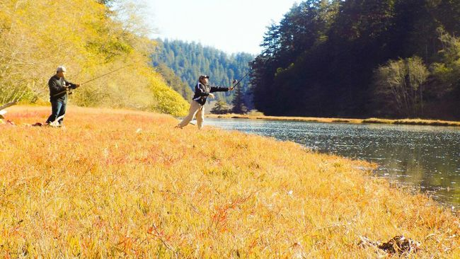 Fish Fishing Meadow Goodtime Fishing Trip Family Medicino Fortbragg Oceanfishing California Landscape Nature Landscape_photography Fall Colors