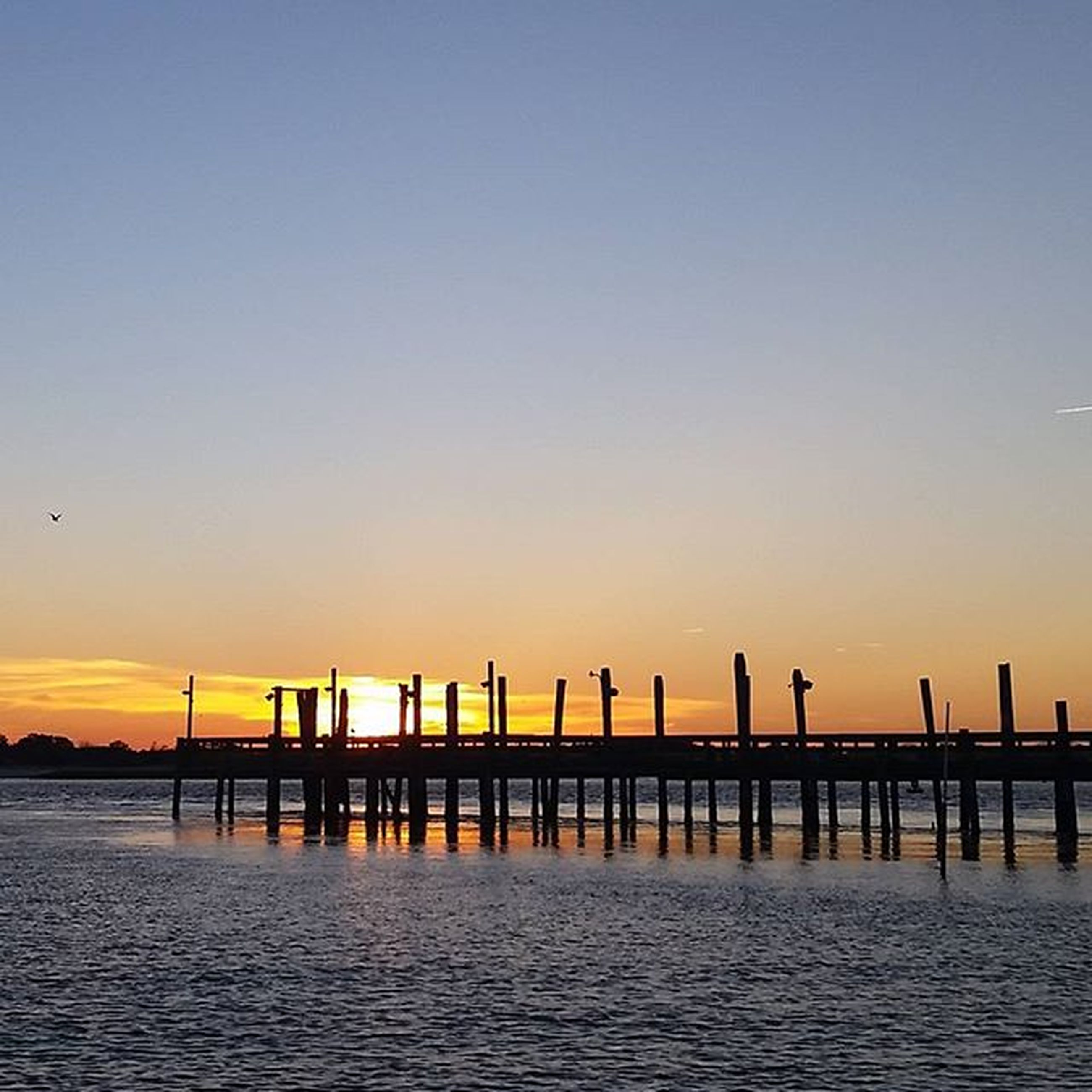 water, sunset, sea, copy space, pier, clear sky, scenics, tranquil scene, waterfront, tranquility, built structure, orange color, beauty in nature, nature, architecture, idyllic, bird, horizon over water, silhouette, incidental people