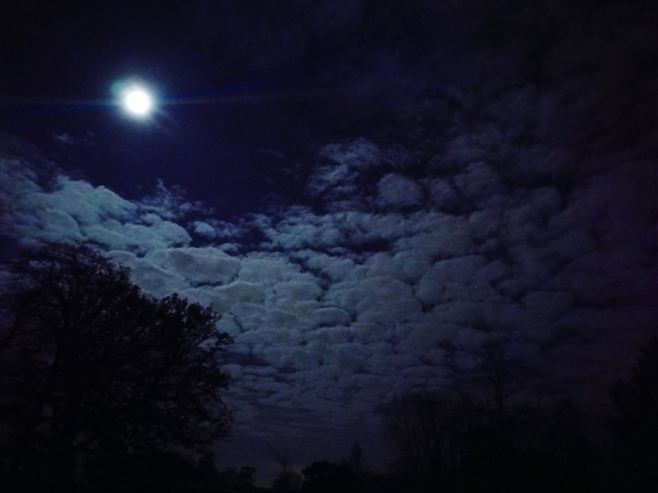 Clouds Night Moon Sky No People Outdoors Scenics Astronomy Cloud - Sky Tree Nature Landscape Space Beauty In Nature Star - Space Satellite View Silhouette Dinning With A View Supermoon Supermoon 2016 Nature Natural Condition Tranquility Beauty In Nature