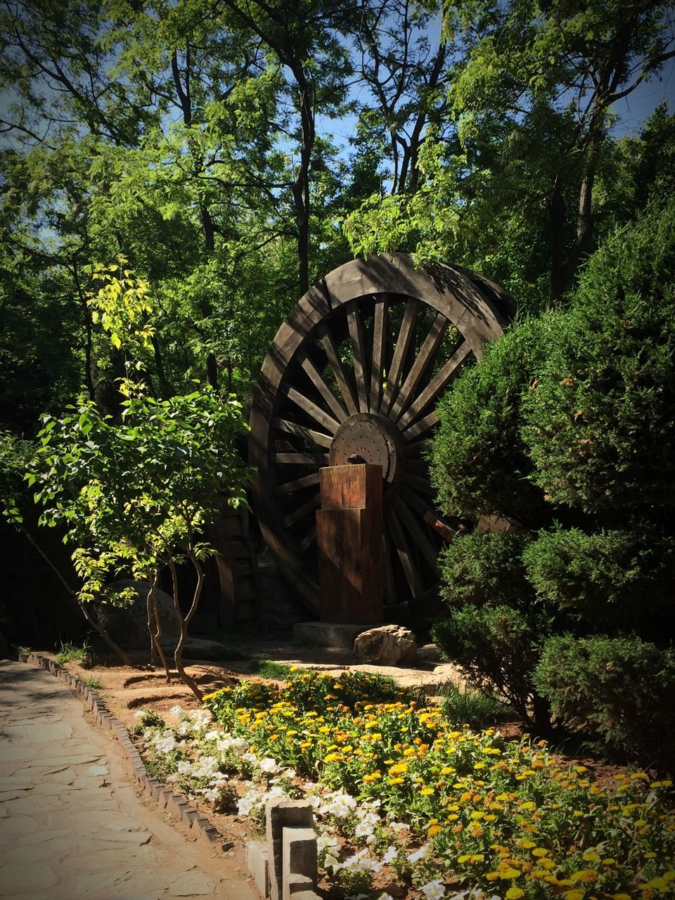 Water Wheel In Park