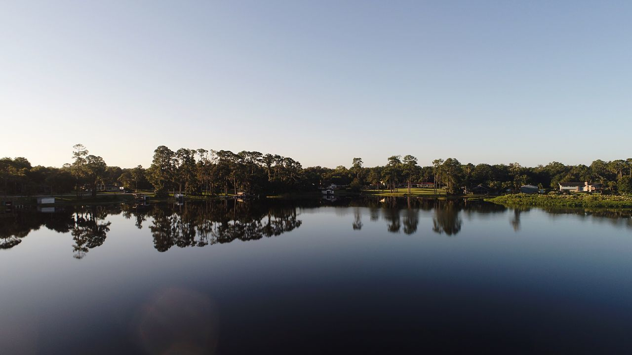 EyeEm Selects Reflection Water Lake Tranquil Scene Clear Sky Nature Tranquility Tree Beauty In Nature Copy Space No People Outdoors Scenics Waterfront Silhouette Sky Blue Day