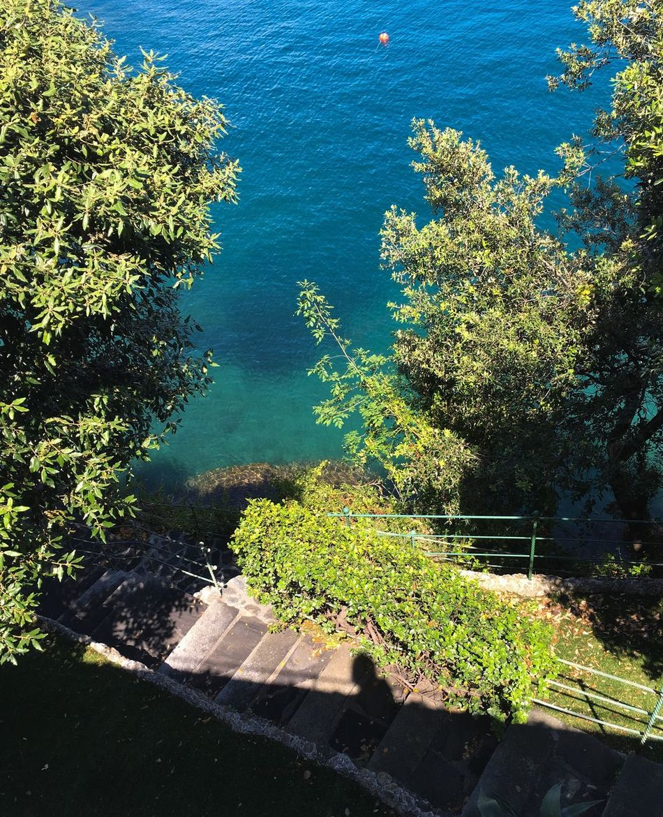 EyeEmBestPics Walking Around Liguria Paraggi Italy❤️ The Week Of Eyeem Details Composition No People Green View From Above Stairs Towards Colors Our Best Pics Vertical Old Stairs Stone Wall Shadow Tranquil Scene Travel Destinations From My Point Of View Welcomeweekly From Where I Stand The Essence Of Summer