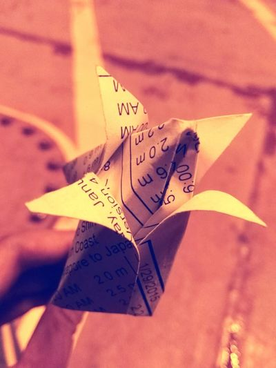 A Paper Flower from A Friendly Philippians Seaman Friendship. ♡
