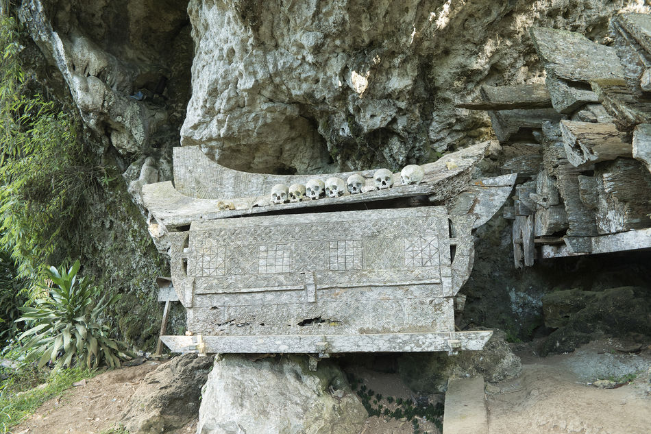 Hundred thousand years hanging coffin and stone graveyard of Toraja People display with human skuls and skeletons in Ke'Te Kesu located at North Toraja. Burial Burial Site Close-up Coffins  Day Dead Death Growth Nature No People Outdoors Plant Tree