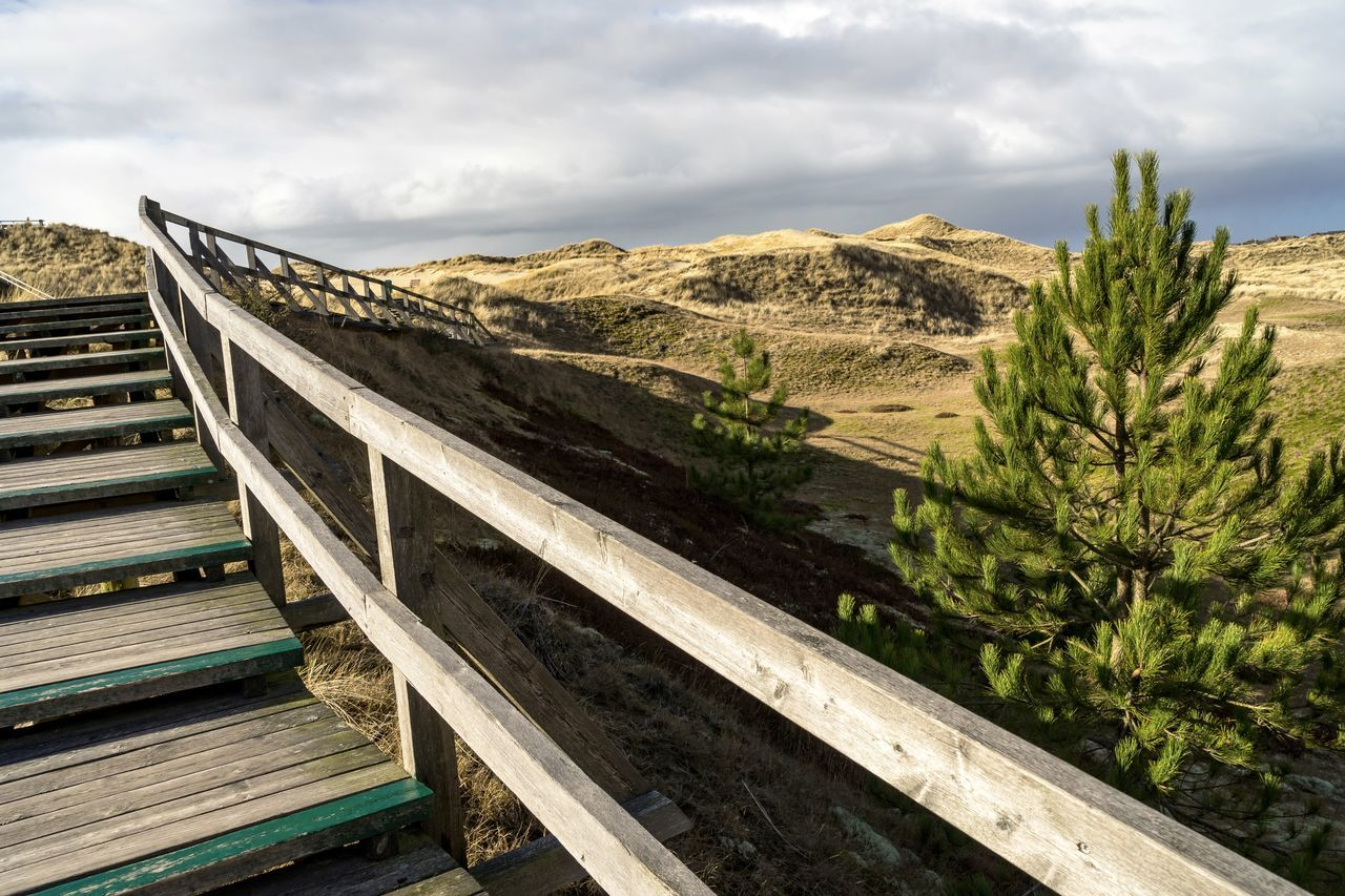 Amrum Beauty In Nature Bohlenweg Cloud - Sky Clouds And Sky Day Dune Dunes Landscape Nature Nature On Your Doorstep Nature Photography Nature_collection No People Outdoors Pine Pine Tree Sky Stair Stairs The Way Forward Wood Wood - Material