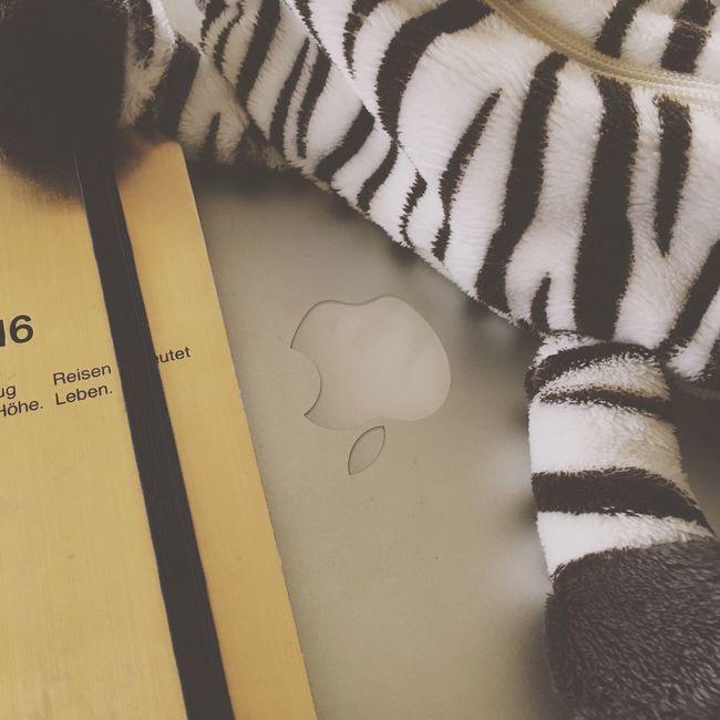 My Student Life 勉強。プレゼン作成。大学生だなあ〜 MacBook Zebra Pencase Animals Fun Studying With Music Avicii Student My Favorite EyeEm EyeEm Nature Lover The Week Of Eyeem