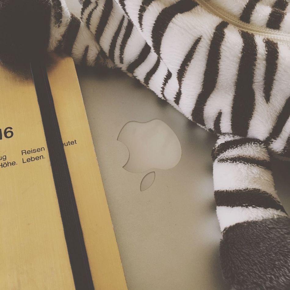My Student Life 勉強。プレゼン作成。大学生だなあ〜 MacBook Zebra Pencase Animals Fun Studying With Music Avicii Student My Favorite EyeEm EyeEm Nature Lover The Week Of Eyeem