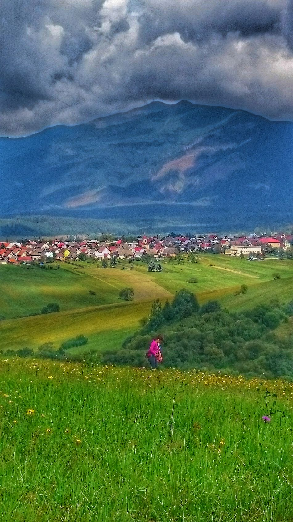 Agriculture Grass Nature Outdoors Beauty In Nature Village Life VillagePeople Mountains Slovakia West Tatras