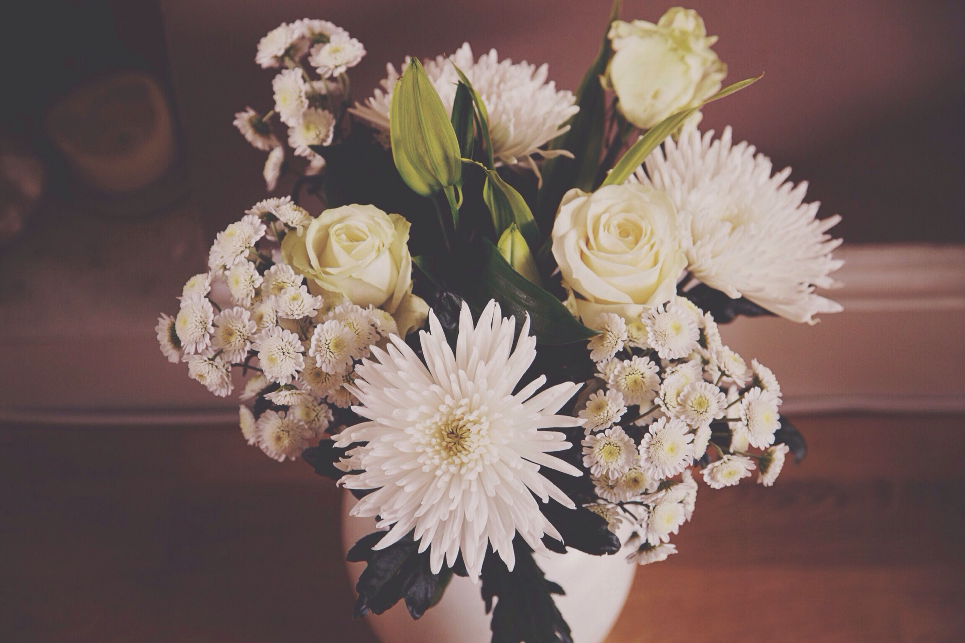 flower, petal, freshness, fragility, flower head, white color, indoors, vase, beauty in nature, bunch of flowers, bouquet, close-up, focus on foreground, nature, growth, blooming, blossom, plant, flower arrangement, in bloom
