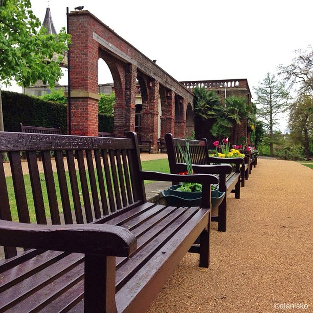 Few more #benches from #holland park ????#alan_in_london #gf_uk #gang_family #igers_london #insta_london #london_only #thisislondon #ic_cities #ic_cities_london #ig_england #love_london #gi_uk #ig_london #londonpop Gi_uk Igers_london Ig_england Love_london Holland Ic_cities_london Benches Ig_london Londonparks Gang_family Londonpop Claudialovesbenches London_only Ic_cities Gf_uk Alan_in_london Insta_london Parkbenchthursday Thisislondon