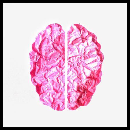 Brain hemispheres concept Conceptual Photography  Madewithpaper Papercraft