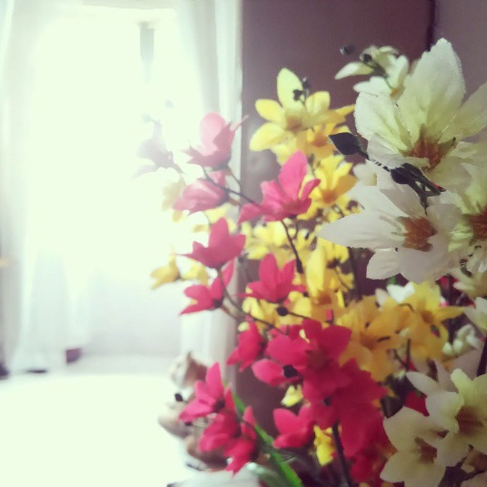 Whenyouseeit Flowers Window Whitecurtains Floral Artificialflowers Summerafternoons Letthelightin Isthatatiger PrettyPretty