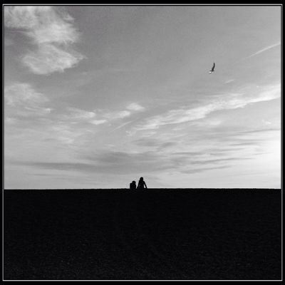 AMPt - LOVE in Brighton by Martin Stapleton