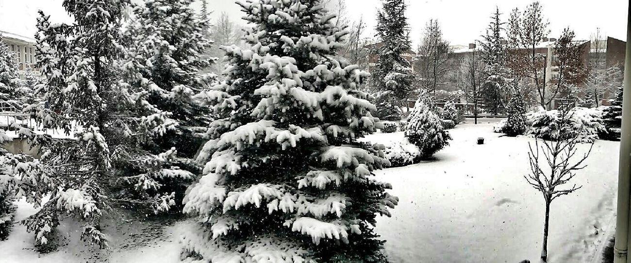Deepfreeze Anadoluuniversitesi Anadoluniversity Snow Eskişehir Black And White