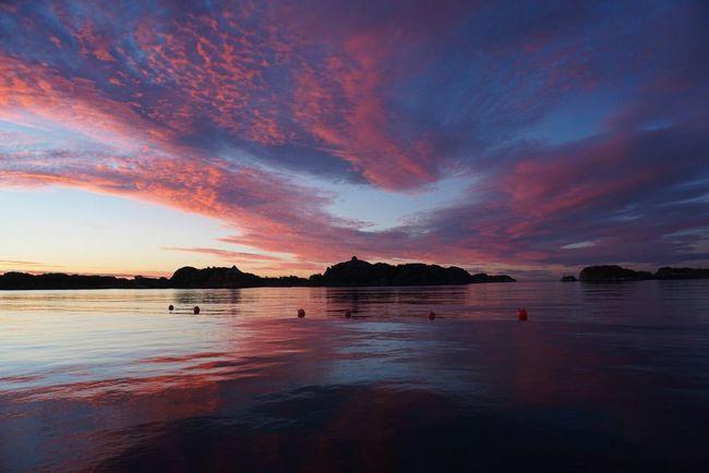 Morning bliss Beauty In Nature Waterfront Dramatic Sky Atmospheric Mood Sunrise_sunsets_aroundworld Classic Norway Enjoying Life EyeEm Nature Lover Tranquil Scene Sunrise_Collection Sunrise Visitnorway Stavern Vestfold