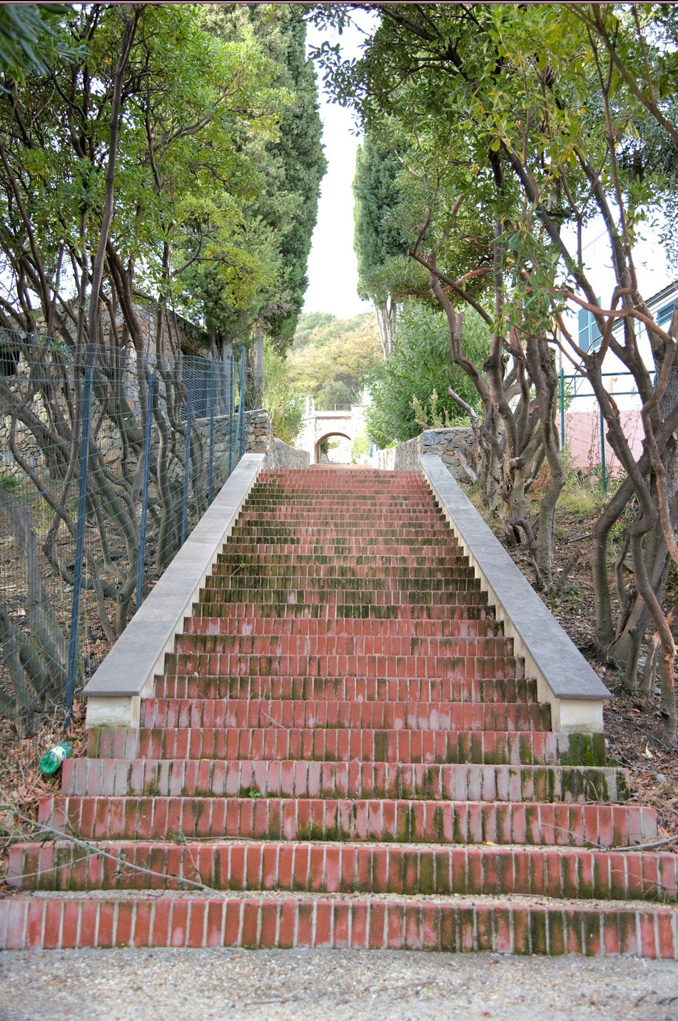 Tree Steps And Staircases Outdoors Scale  Architecture Scales And Fins Street Up Street Photography Finding New Frontiers Italy Landscape Brick Building Built Structure Brick Work Scalata Rural Scene Oldtown Streetphoto Bricks Bricks And Cement Brick Buildings Step By Step