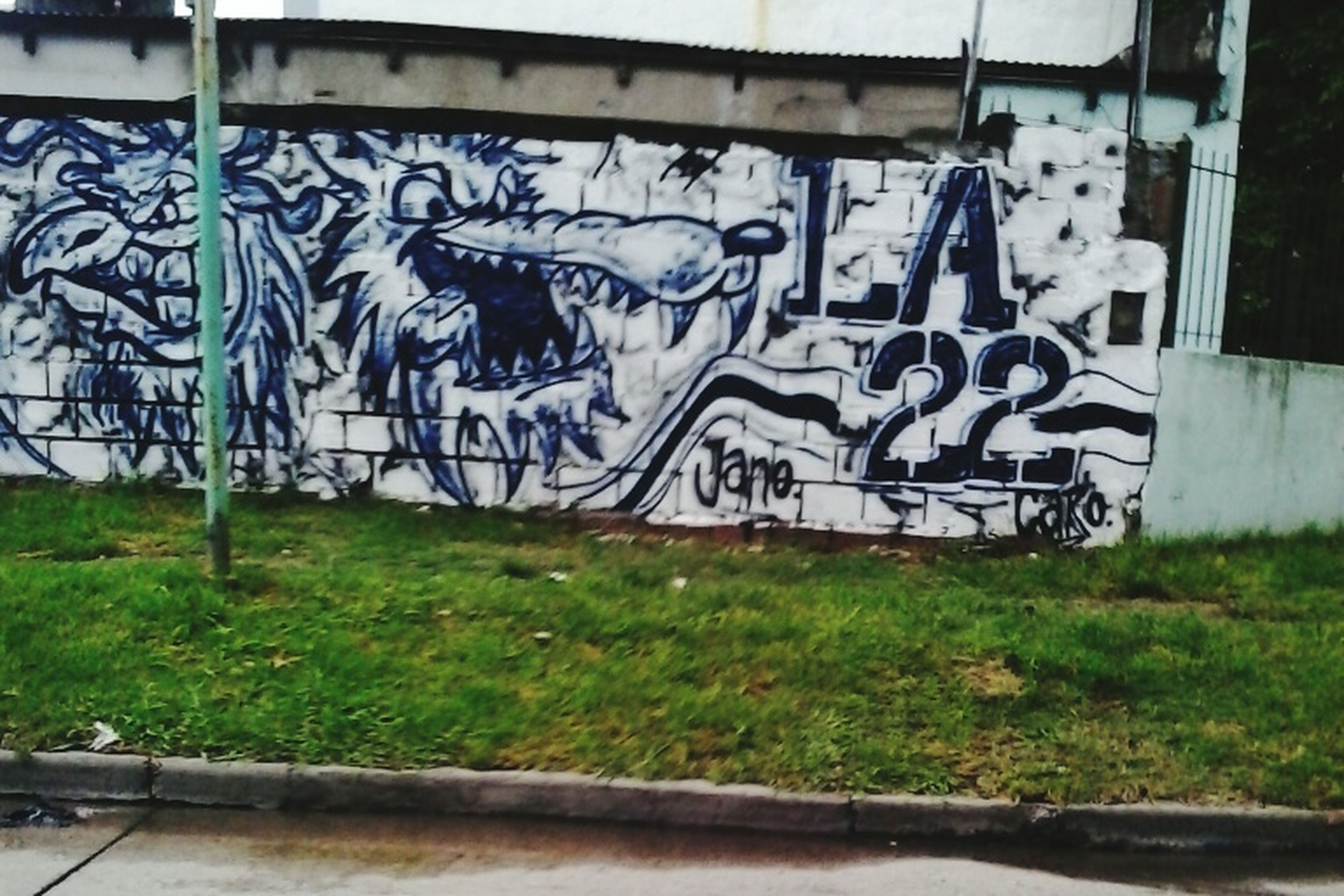 graffiti, art, creativity, art and craft, built structure, wall - building feature, architecture, building exterior, day, street art, outdoors, no people, grass, human representation, wall, plant, fence, metal, sunlight, animal representation