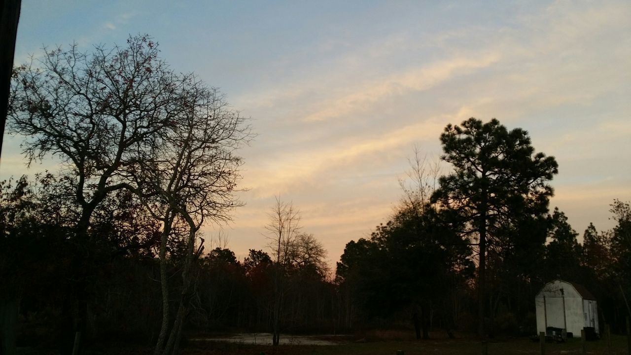 South Carolina Sky Clouds Backyard Photography