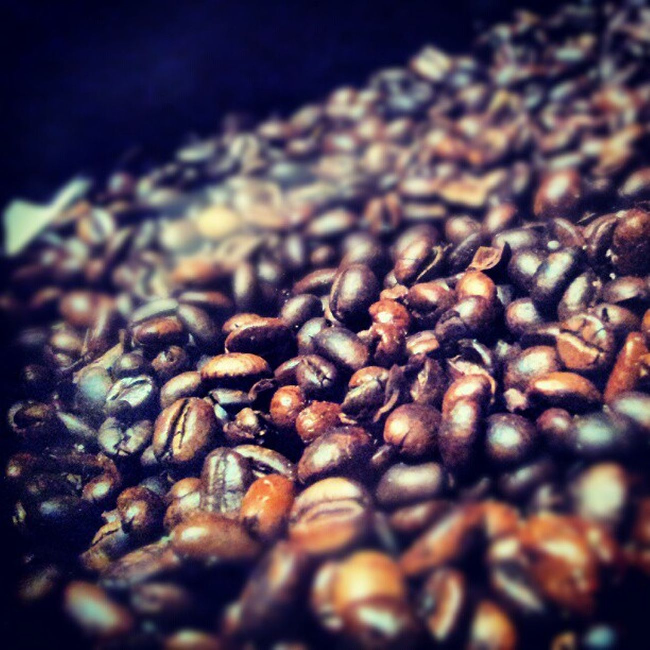 Roasted Coffee قهوة بن